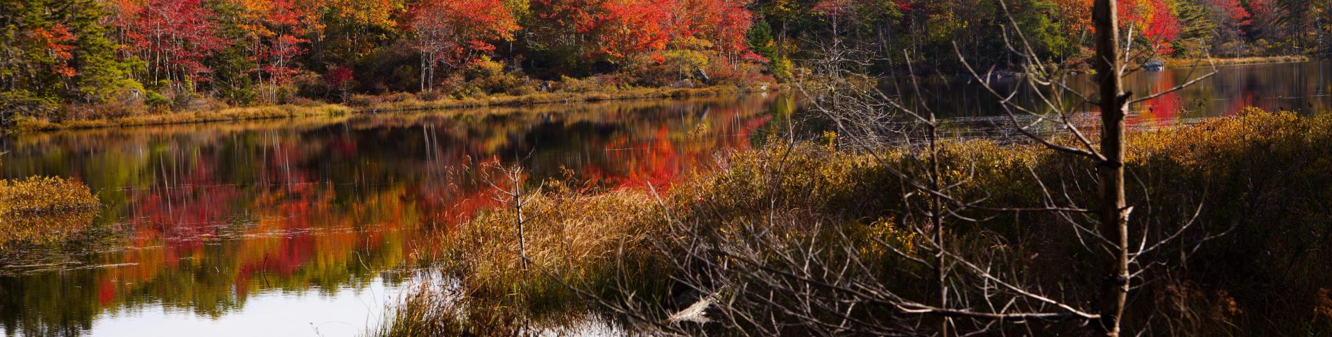 Long Lake Provincial Park Association